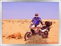 Trip to Tunisia - No comment...